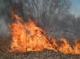 Pożar traw na Czekaju