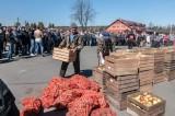 Jabłka dla mieszkańców Bratkowic
