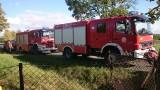 Pożar budynku mieszkalnego na Dąbrach. Starsza kobieta trafiła do szpitala.
