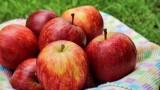 Jabłka dla mieszkańców